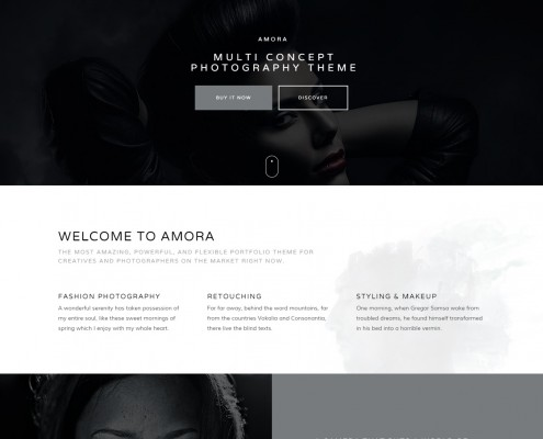 Amora - Creative Responsive Multi-Concept Theme