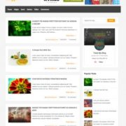 Bloggie Blogger Templates