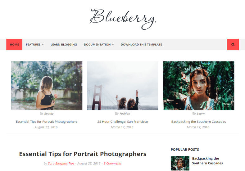 Blueberry Blogger Template is a simple and classy elegant blogging blogspot responsive theme, crafted with perfection and delicacy