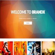 BrandX Blogger Templates