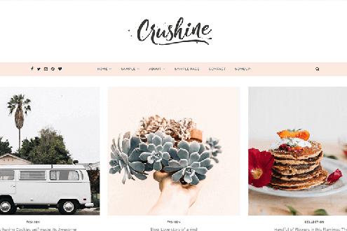 Crushine - Clean WordPress Theme