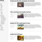 Editor Responsive Blogger Templates