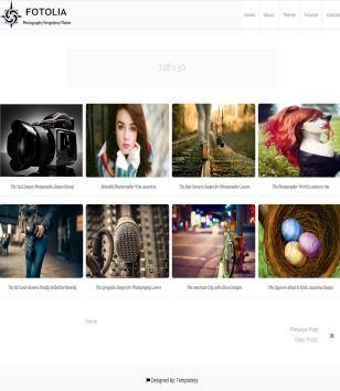 Fotolia Photography Blogger Templates