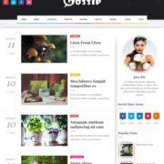 Gossip Blogger Templates