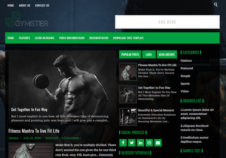 Gymster Blogger Template is a professionally designed latest uniquely made customised blogging blogger theme