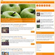 HealthyLiving Blogger Templates
