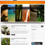 Inspiration Blogger Templates