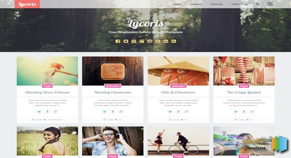 Lycoris Photography Free Blogger Templates - Blogger photography templates professional