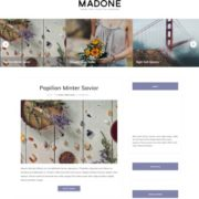 Madone Blogger Templates