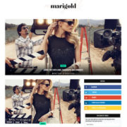 Marigold Blogger Templates