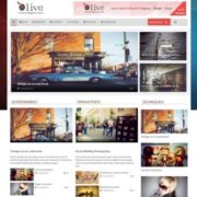 Olive News Blogger Templates