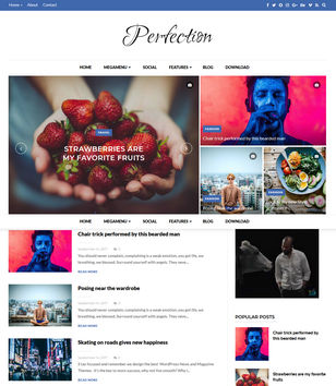 Perfection Blogger Templates