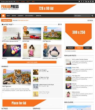 Punjab Press Responsive v2 Blogger Templates