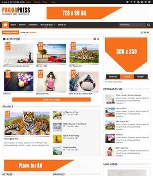 Punjab Press Responsive v3 Blogger Templates