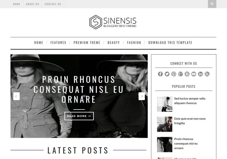 Sinensis Blogger Template  Professional personal girly
