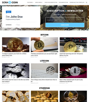 Sora Coin Blogger Templates