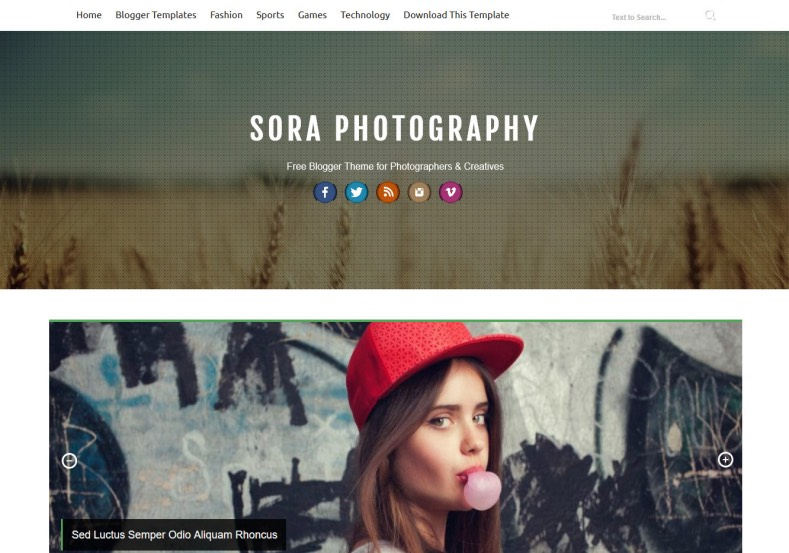 Sora Photograph Blogger Template