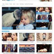 Sora Style Blogger Templates