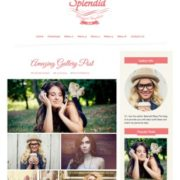 Splendid Pink Blogger Templates
