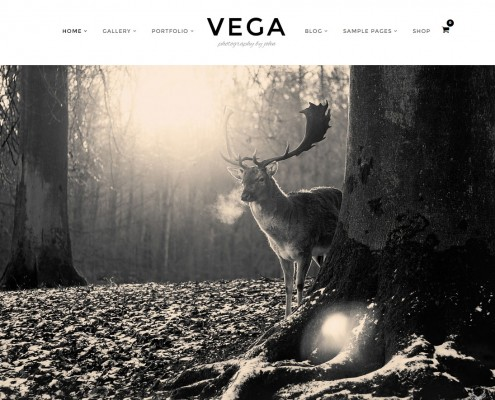 Vega Responsive Photography Portfolio Theme