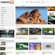 VideoPro Blogger Templates