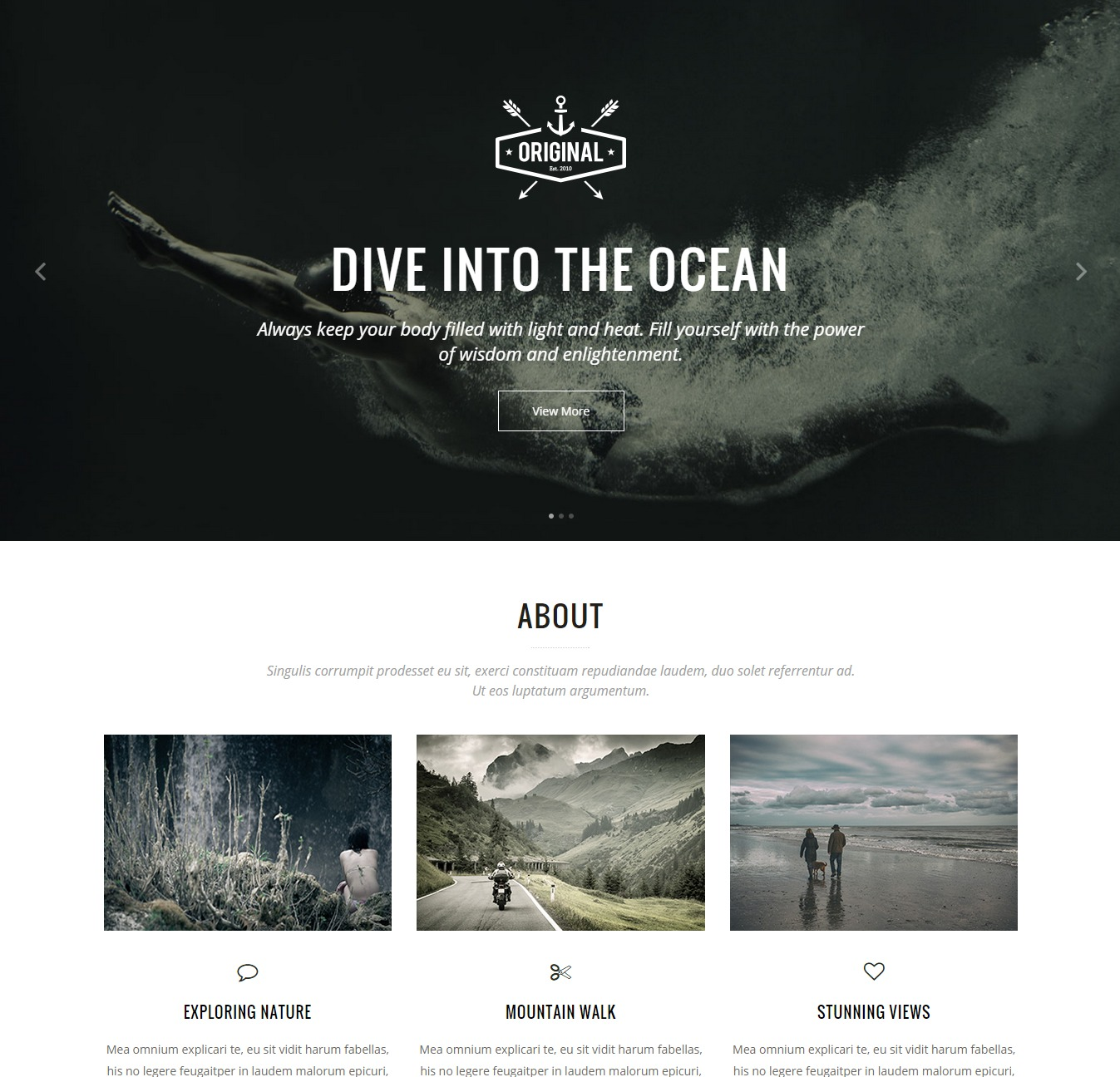 Vigor WordPress Theme